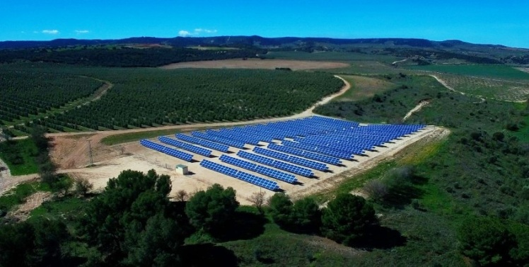 Planta Fotovoltaica Casas de Hualdo