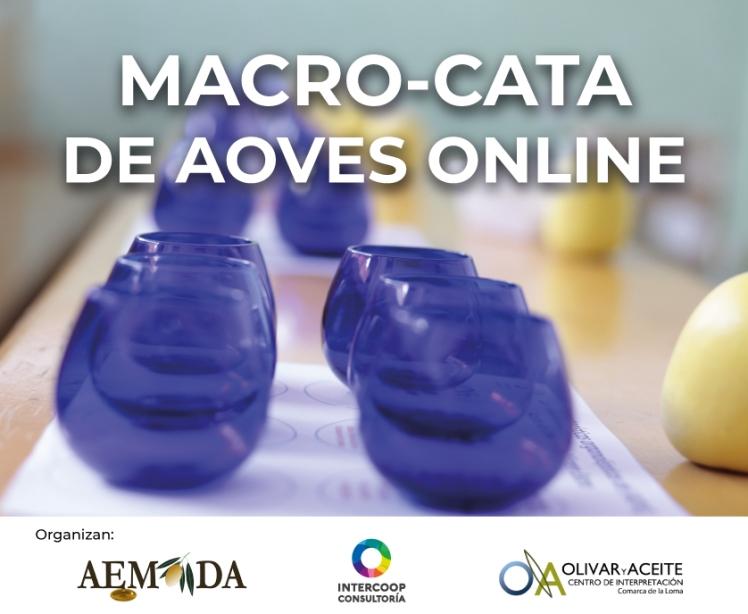 macrocata_online_2